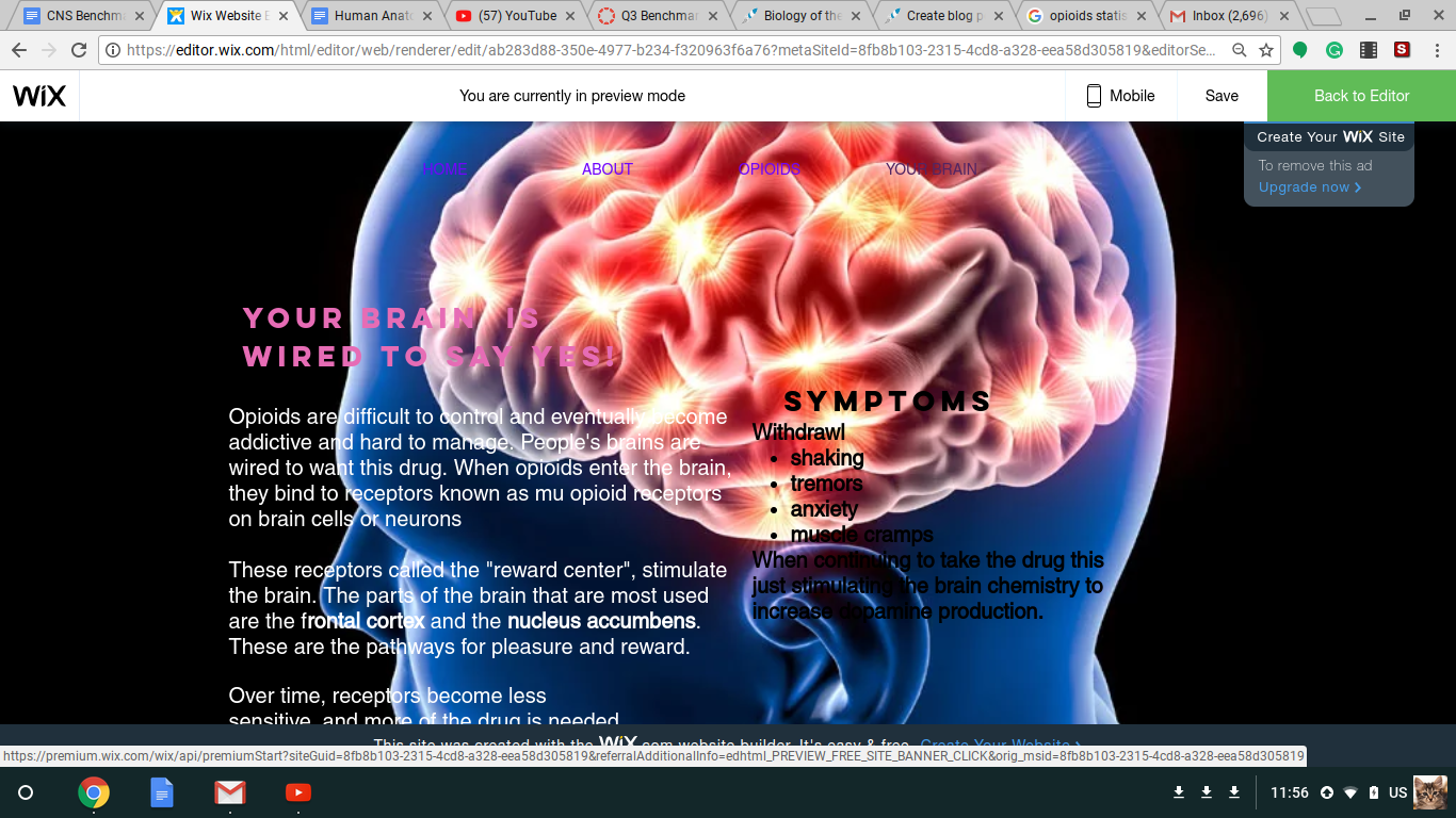 Human Anatomy Benchmark Your Brain On Drugs Science Leadership